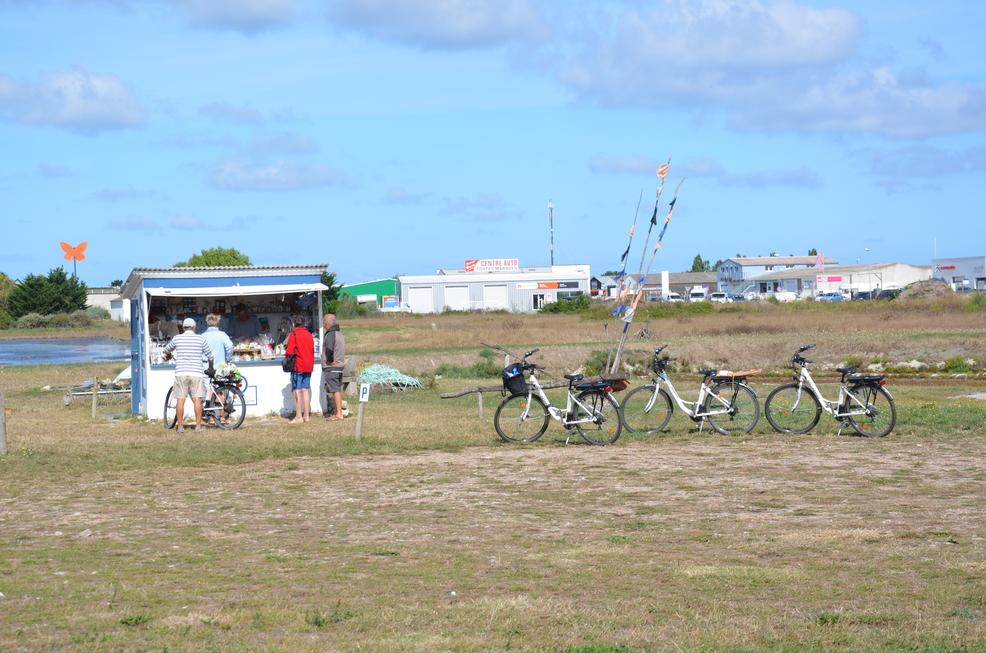 Jeanne à Noirmoutier – dernier tour de l'île
